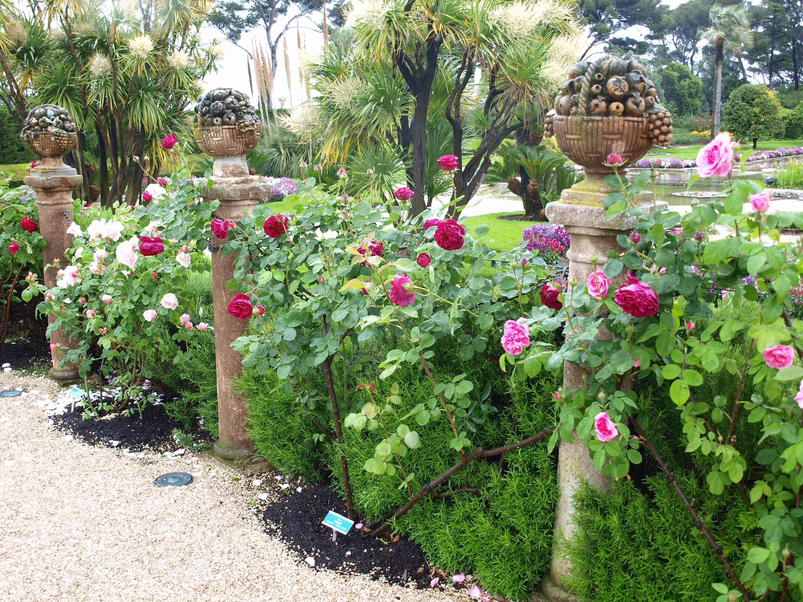 notre offre paysagiste jardin conseil. Black Bedroom Furniture Sets. Home Design Ideas